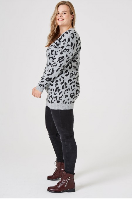 Leopard Print Long Sleeve...